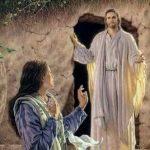 """""""….e viu que a pedra tinha sido tirada do túmulo"""" (21 DE ABRIL DE 2019)"""