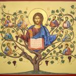 O bio-sistema de Jesus: a Videira e os ramos (02/05/2021)
